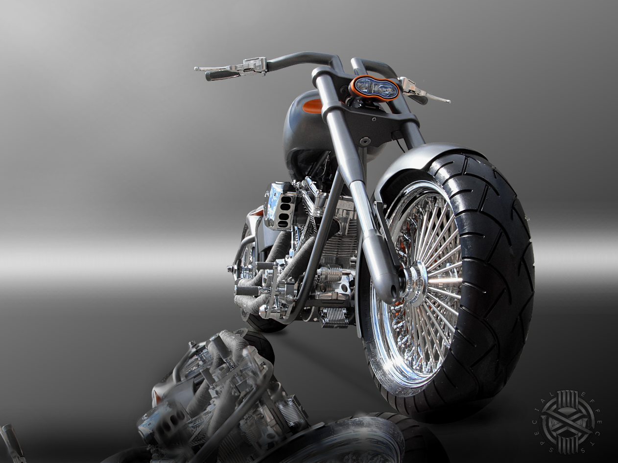 custom softail harley motorcycles